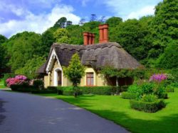 Ireland- A beautiful Cottage